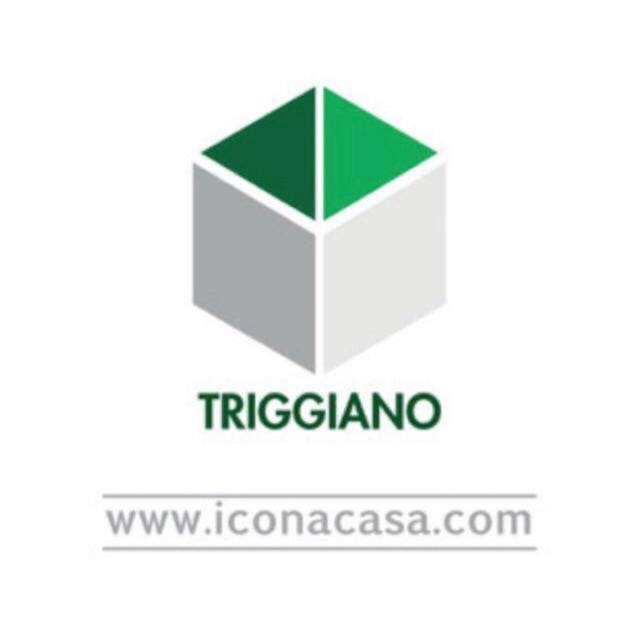 Via Virgilio163, Triggiano - Foto 1